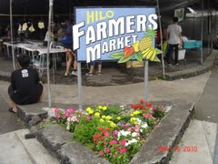 Hilo Farmers Market on Walking Tour